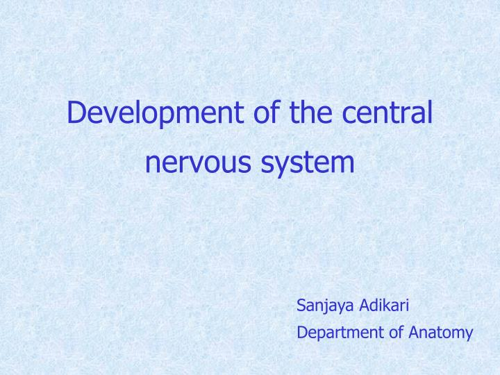 Development of the central nervous system