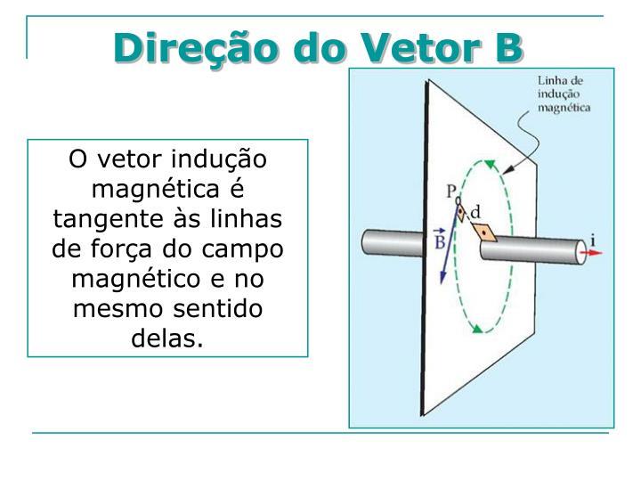 Direção do Vetor B
