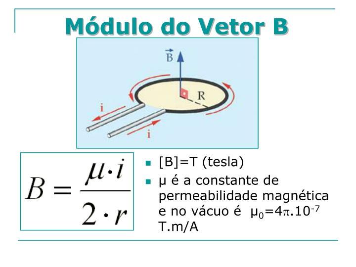 Módulo do Vetor B
