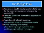 the pledge to ali