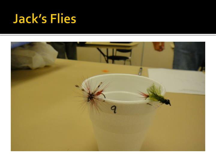 Jack s flies