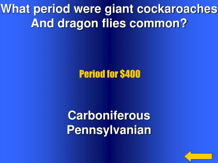 What period were giant cockaroaches