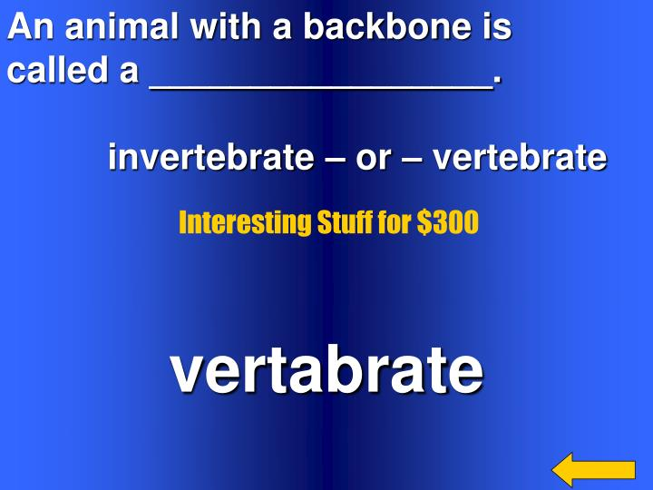 An animal with a backbone is
