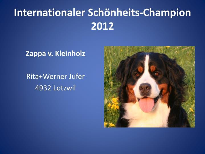 Internationaler Schönheits-Champion 2012