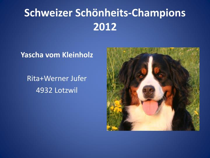 Schweizer Schönheits-Champions 2012