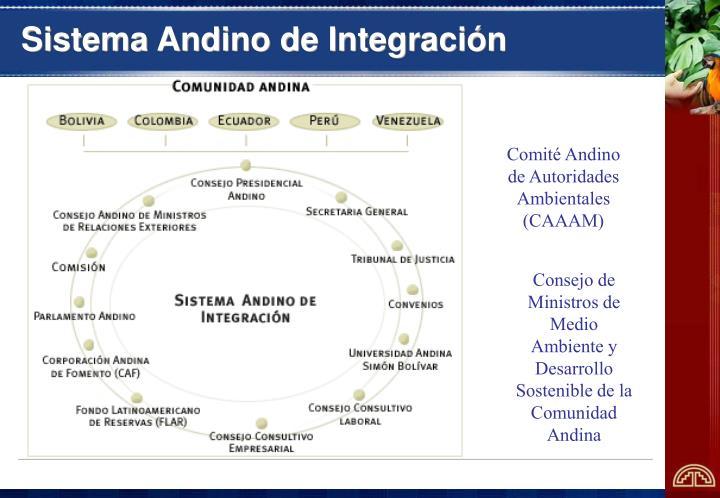Sistema andino de integraci n