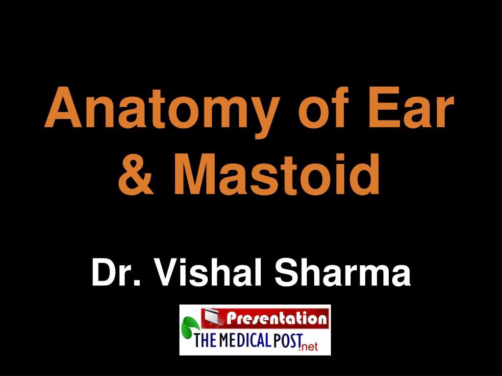 PPT - Anatomy of Ear & Mastoid PowerPoint Presentation - ID:4876379