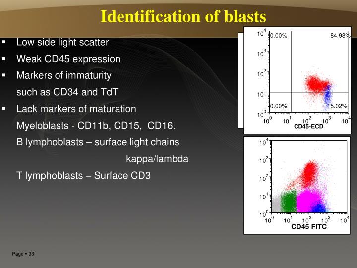 Identification of blasts