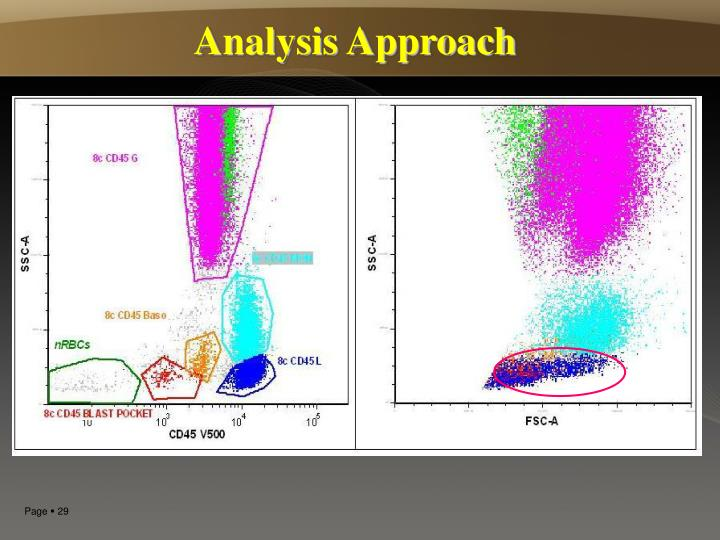 Analysis Approach