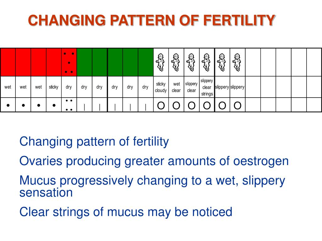 PPT - Billings Ovulation Method PowerPoint Presentation - ID