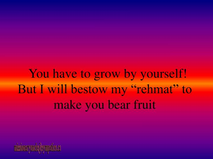 "You have to grow by yourself! But I will bestow my ""rehmat"" to make you bear fruit"
