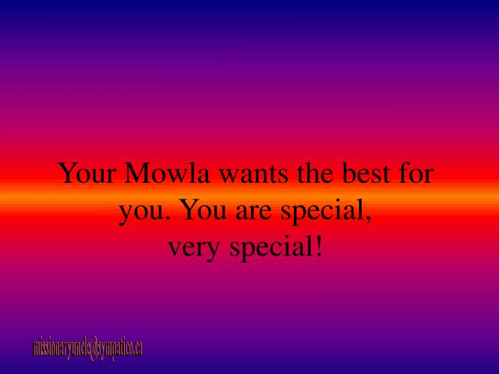 Your Mowla wants the best for you. You are special,