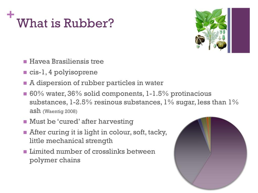 PPT - Correlating Additives to Deterioration in Historical Rubber