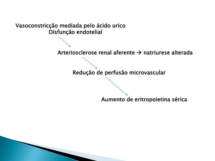 Vasoconstricção mediada pelo ácido urico