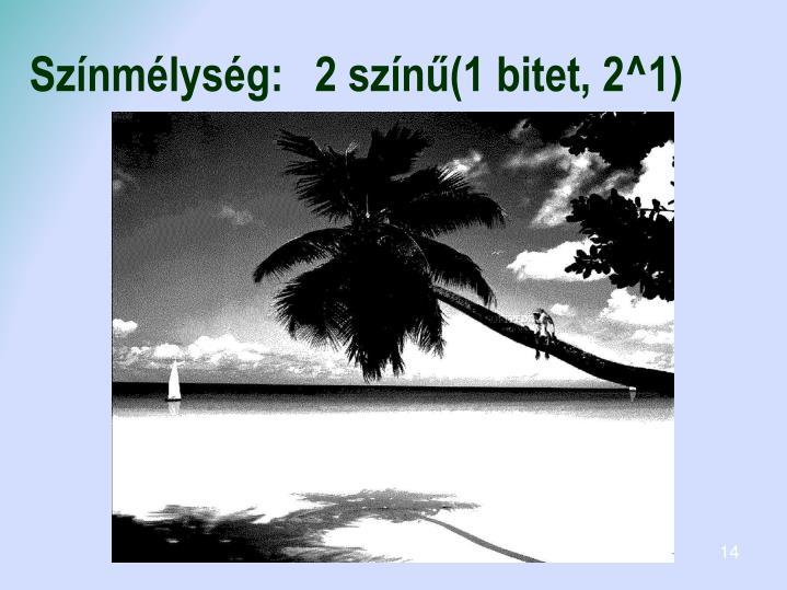 Színmélység:2 színű(1 bitet, 2^1)