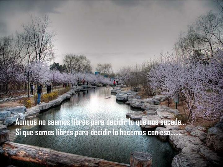 Aunque no seamos libres para decidir lo que nos suceda…