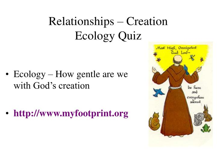 relationships creation ecology quiz n.