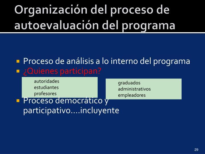 Organización del proceso de autoevaluación del programa