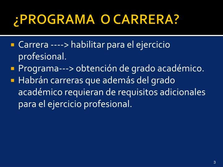 Programa o carrera