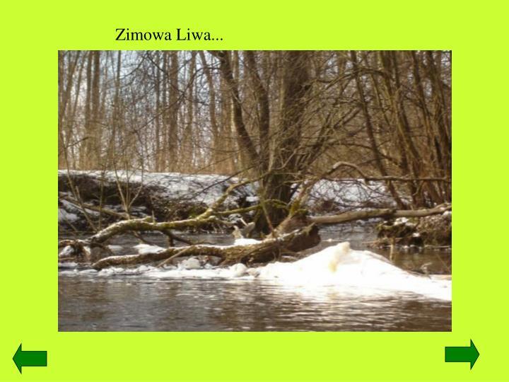 Zimowa Liwa...