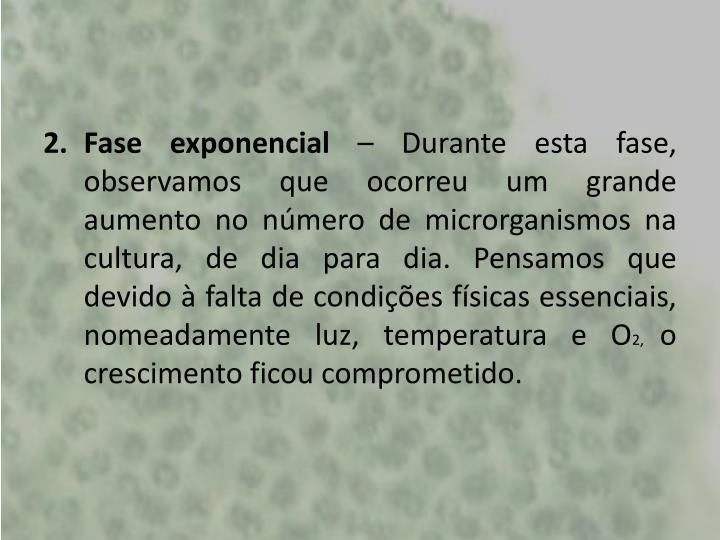 Fase exponencial