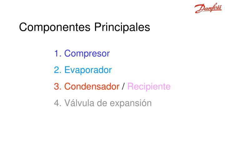 C omponentes principales