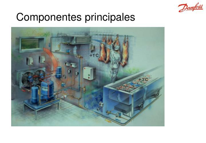Componentes p rincipales