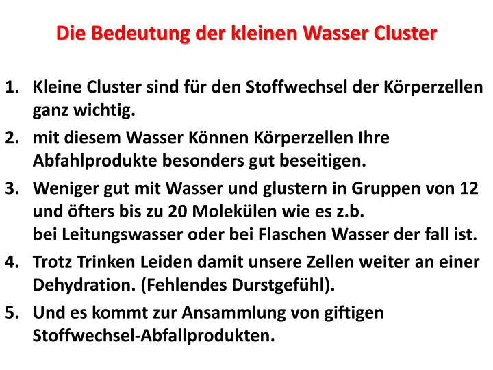 Die Bedeutung der kleinen Wasser Cluster