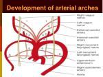 development of arterial arches