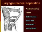 laryngo tracheal separation