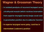 wagner grossman theory