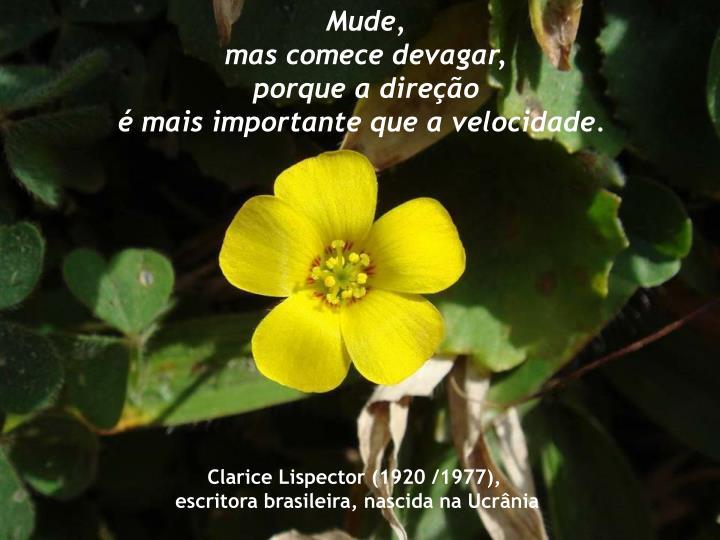 Mude,