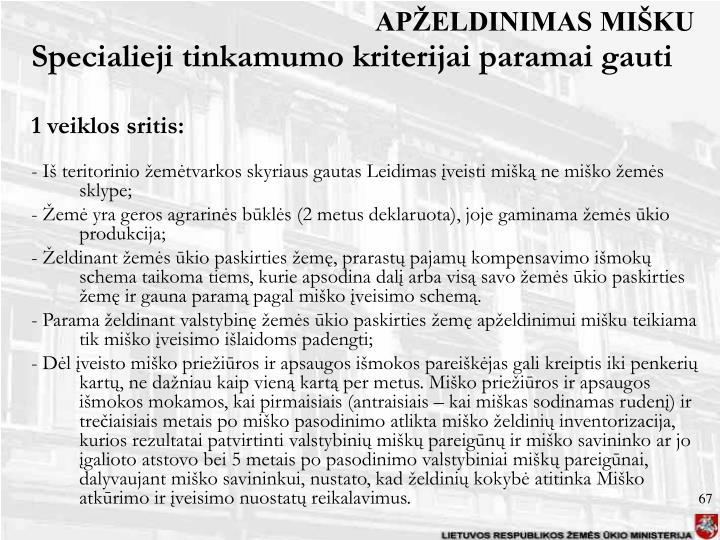 APŽELDINIMAS MIŠKU