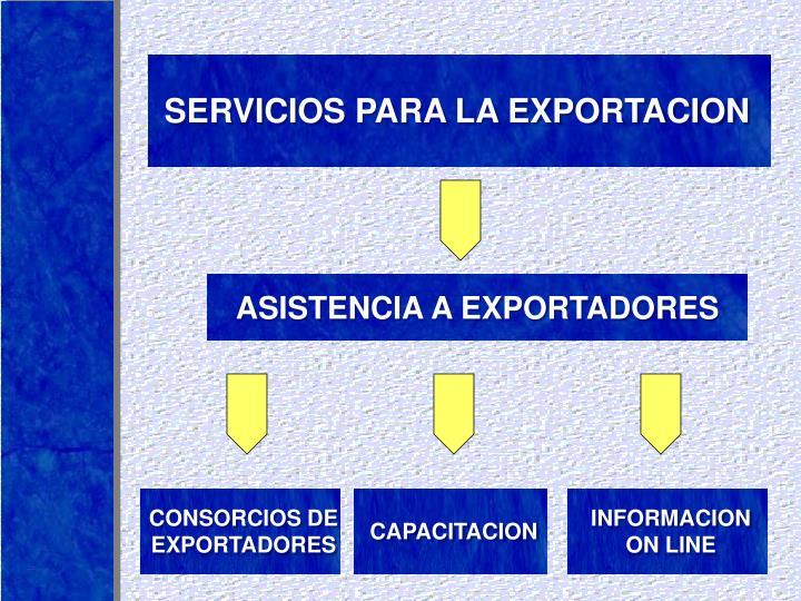 SERVICIOS PARA LA EXPORTACION
