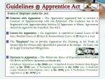 guidelines @ apprentice act1