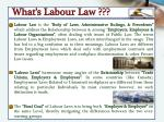 what s labour law
