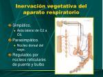 inervaci n vegetativa del aparato respiratorio