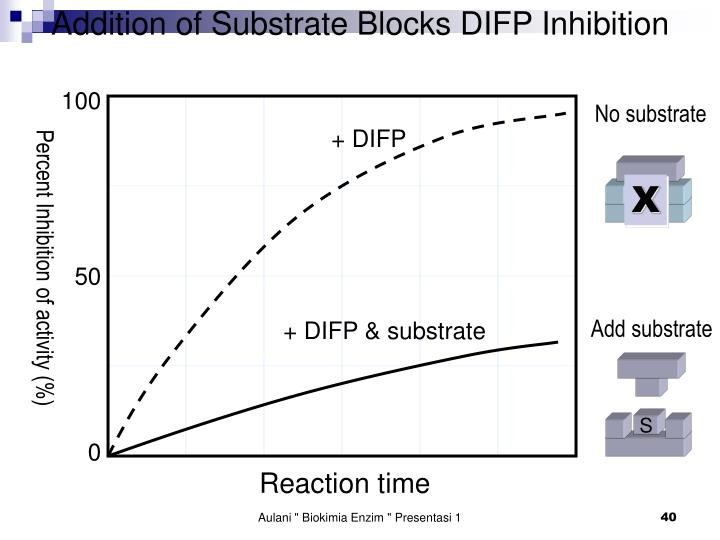 Addition of Substrate Blocks DIFP Inhibition