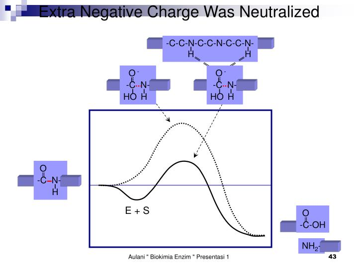 Extra Negative Charge Was Neutralized