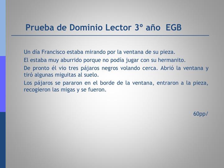 Prueba de Dominio Lector 3º año  EGB