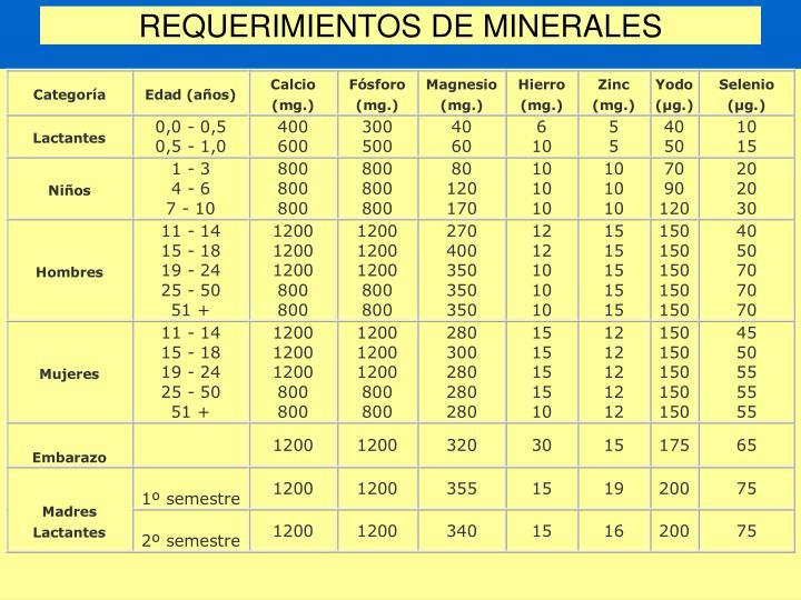 REQUERIMIENTOS DE MINERALES