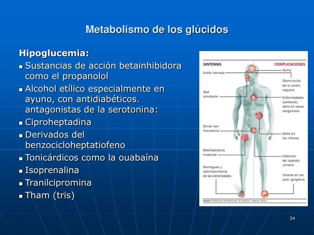 Loopy Metabolismo basale Clases de los profesionales
