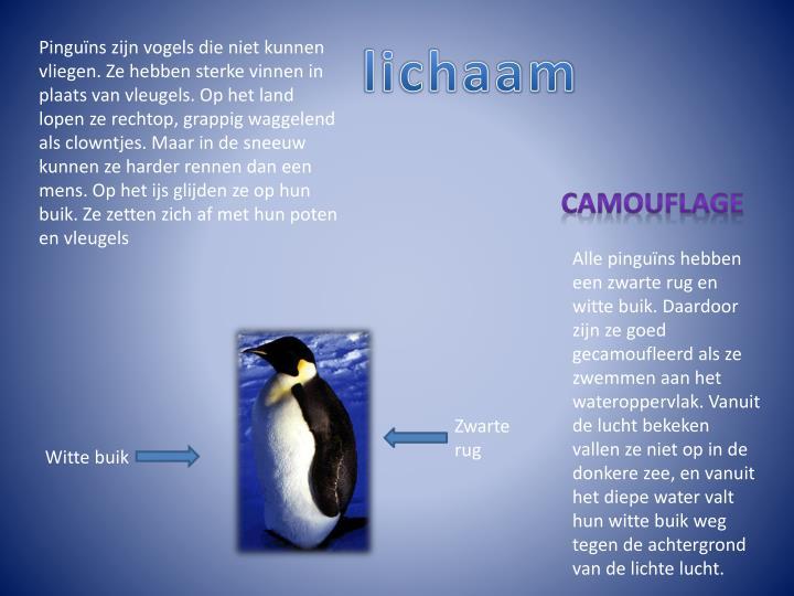 Pinguïns zijn vogels die niet kunnen vliegen. Ze hebben sterke vinnen in plaats van vleugels. Op het land lopen ze rechtop, grappig waggelend als clowntjes. Maar in de sneeuw kunnen ze harder rennen dan een mens. Op het ijs glijden ze op hun buik. Ze zetten zich af met hun poten en vleugels