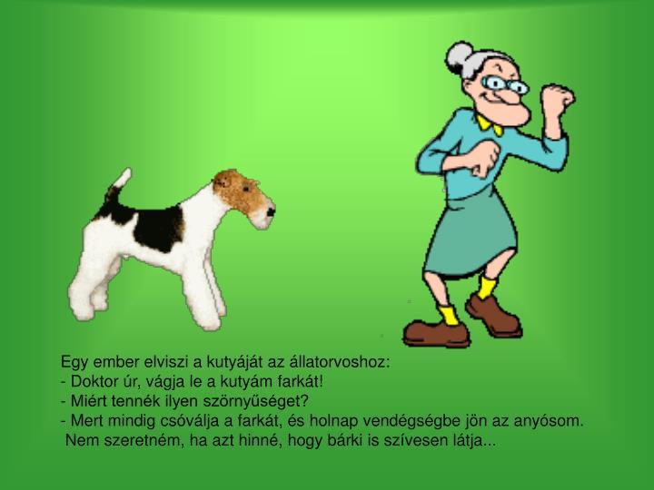 Egy ember elviszi a kutyáját az állatorvoshoz: