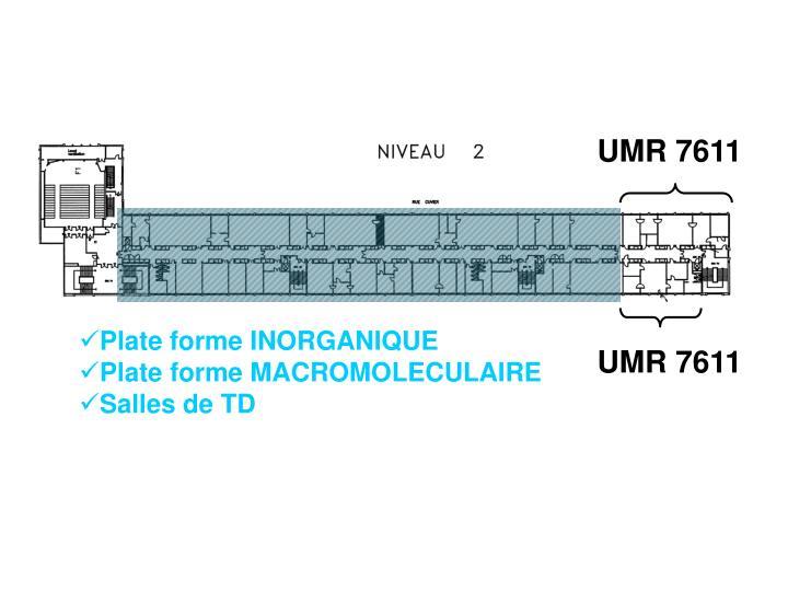 UMR 7611
