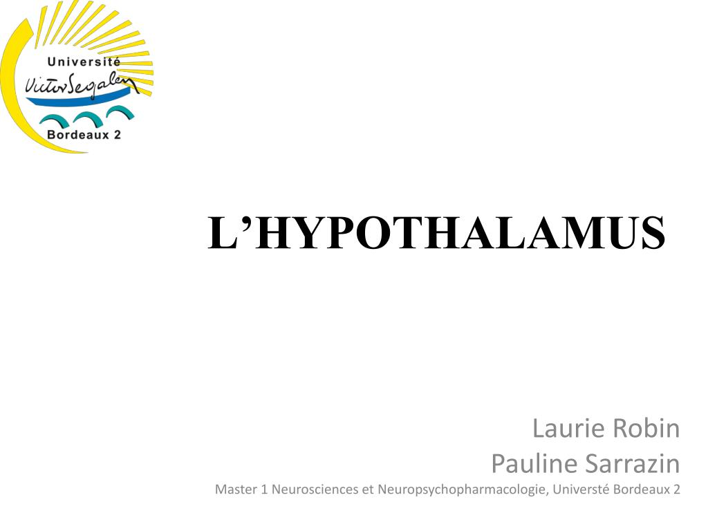 PPT - L\'HYPOTHALAMUS PowerPoint Presentation - ID:4899530