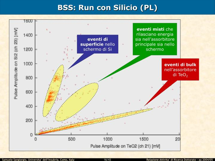 BSS: Run con Silicio (PL)