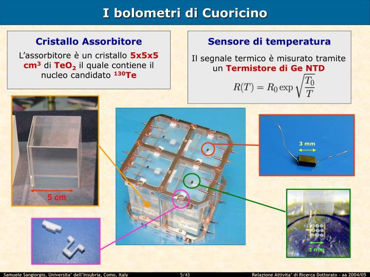 I bolometri di Cuoricino