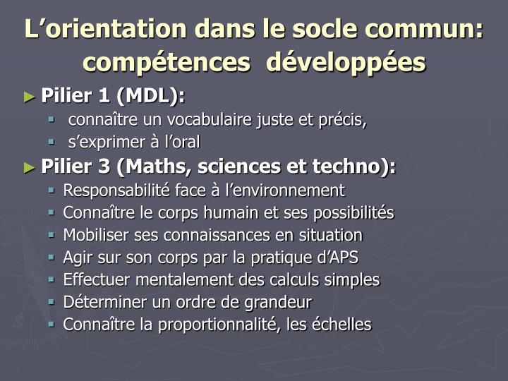 L'orientation dans le socle commun: compétences