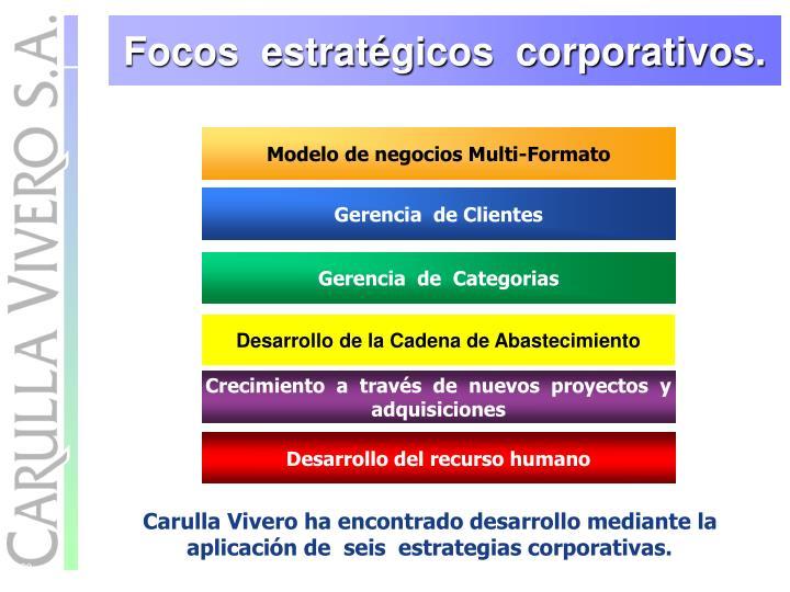 Focos  estratégicos  corporativos.